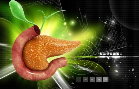 עבודת בוגרים – טיפול ביואורגונומי בגידול על הלבלב – רנה פלג