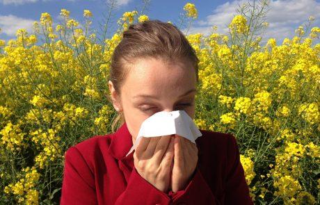 עבודות בוגרים: טיפול ביואורגונומי באלרגיה בעונת מעבר – יעל שושני